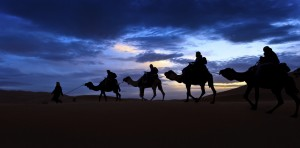 Camel train silhouetted against colorful sky crossing the Sahara Desert, Morocco
